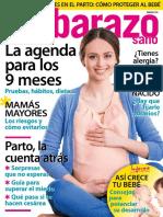 04-16-embarazo