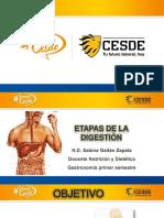 Clase 3. Etapas de la digestion 2017.ppt