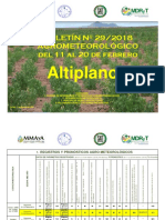 Boletin N° 292018 - Agrometeorológico del 11 al 20 de febrero-Altiplano