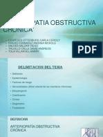 Arteriopatia Obstructiva Cronica