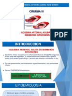 Isquemia Arterial Aguda Exposicion