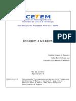 131350941-Britagem-e-Moagem.pdf