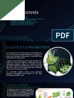 bio.pptx