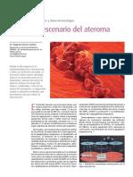 Endotelio PDF