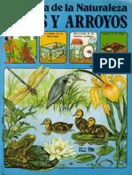 La Senda de La Naturaleza - Lagos y Arroyos