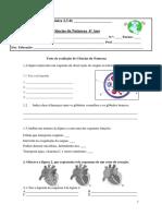55484284-Ficha-de-avaliacao-sistema-circulatorio-6-º-ano.docx