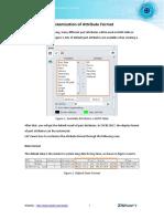 Customization_of_AttributeFormat.pdf