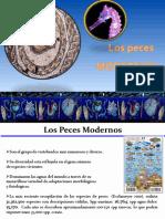 2. Peces Modernos.pptx