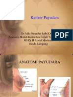 Kanker Payudara2