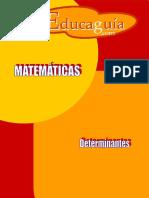 02. Determinantes