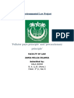 310783931-Environmental-Law-Project.doc