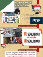 2.- PRINCIPIOS DE LA PREVENCIÓN.pptx
