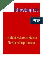 mobilizsnp.pdf