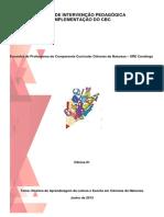 oficina-2001-20-20direitos-20de-20aprendizagem-20de-20leitura-20e-20escrita-20em-20ci-c3-aancias-130918064457-phpapp01 (1).pdf