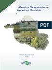recuperaao_de_paetagens.pdf