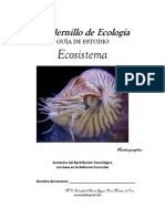 Cuadernillo ECO I