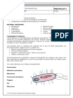 Microsoft Word - Bacterias.doc