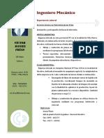 CV 2017-1.pdf