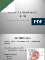 Placenta Medicina