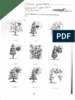 5.1 Las Plantas Cuaderno Tareas
