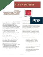 Anemia-en-perros.pdf