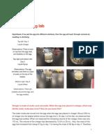 osmosis egg lab