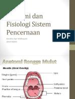 Anatomi Dan Fisiologi Pencernaan