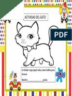 Actividad Del Gato