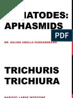 Aphasmids (1)