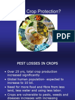 Lecture 2 Pest and Crop Loss