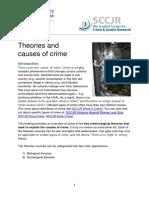 SCCJR Causes of Crime