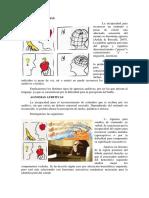 Agnosias y Disglosia.docx