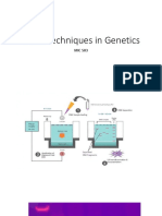Some Techniques in Genetics.pptx