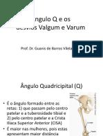 anguloq.pdf