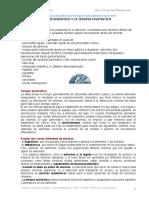 A_DIETA+ENZIMATICA+Y+PANCREAS