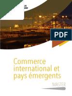 Master Commerce International u Bordeaux Montaigne