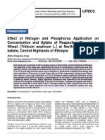 Effect of Nitrogen and Phosphorus Application on Concentration and Uptake of Respective Element by Wheat (Triticum aestivum L.) at North Shoa, Koticho kebele, Central Highlands of Ethiopia