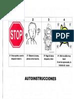 Auto Instrucciones