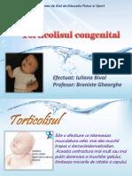 255477837-torticol-pptx.pptx
