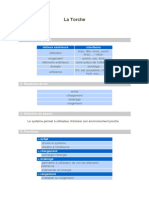 Torche.pdf