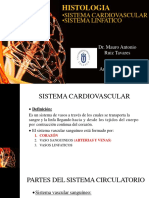 Hist 11 - 2017-2 Sistema Cardiovascular y Linfatico[1]