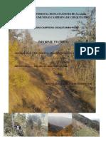 Informe de Invetario Forestal 2