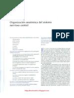 Kandel - Principios de Neurociencia 317-336