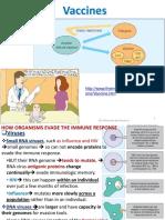 04 Vaccines Immuno