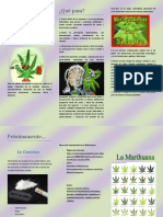 Triptico La Marihuana1