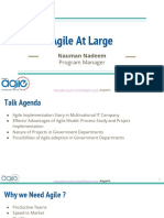 Agile at Large by Nauman Nadeem