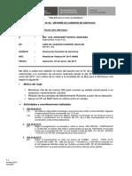 Informe Comision de Servicios Anexo 06