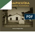 Volume 24 - 2016 - Carapicuíba - Uma Aldeia Mameluca