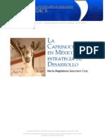 CabrasMIX.pdf