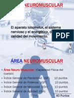 2 Área Neuromuscular